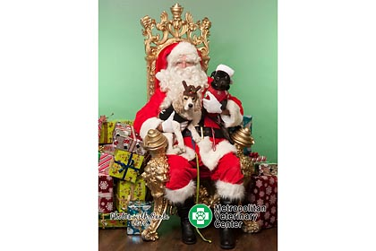 Metropolitan Veternary Center holiday photo print onsite with Santa and your pets